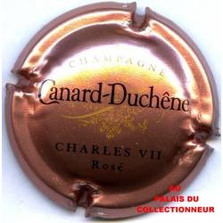 CANARD DUCHENE 076c LOT N°18137