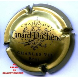 CANARD DUCHENE070a LOT N°11941