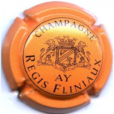FLINIAUX REGIS 024b LOT N° 13085