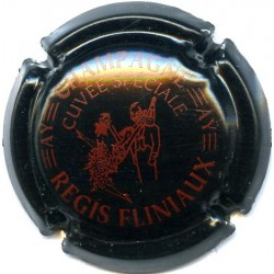 FLINIAUX REGIS 040c LOT N°13191