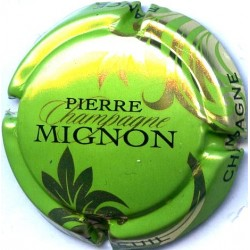 MIGNON PIERRE 061g LOT N°13262