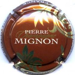 MIGNON PIERRE 061l LOT N°13264