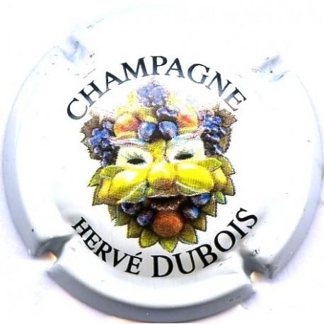 DUBOIS HERVE 01a LOT N°13365