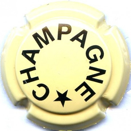 CHAMPAGNE 0396g LOT N°13370