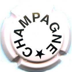 CHAMPAGNE 0396h LOT N°13371