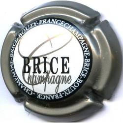 BRICE 15 LOT N°13683