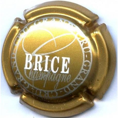 BRICE 16 LOT N°13684