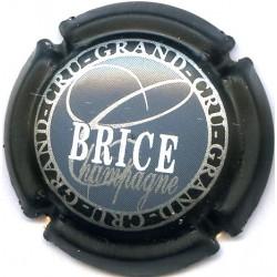 BRICE 17 LOT N°13685