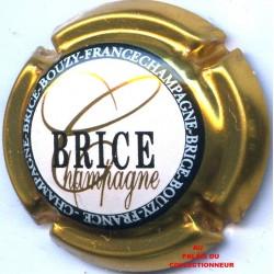 BRICE 18 LOT N°14638