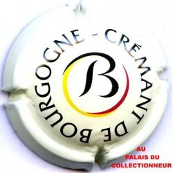 03 CREMANT DE BOURGOGNE 21 LOT N°6387