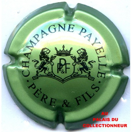 PAYELLE P. & F. 03 LOT N°18701