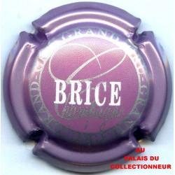 BRICE 19 LOT N°18905