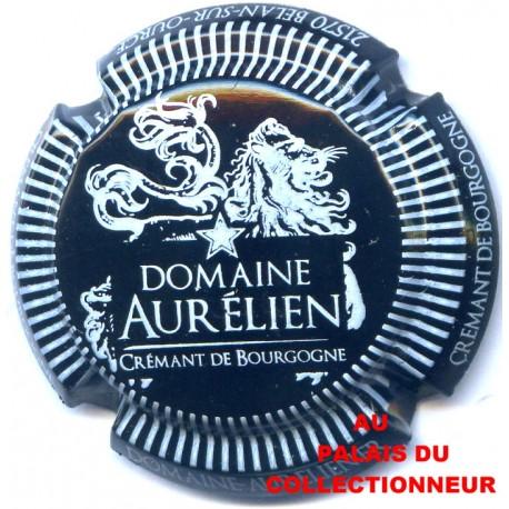 03 DOMAINE AURELIEN 01 LOT N°1703