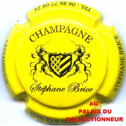 BRICE STEPHANE 01 LOT N°5083
