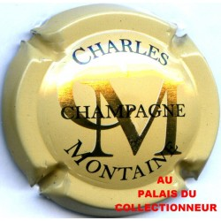 CHARLES MONTAINE 01 LOT N°19155