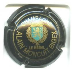 MONCUIT BIGEX LOT N°3873