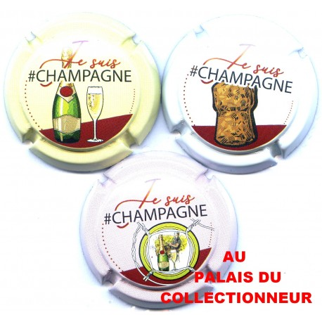 CHAMPAGNE 1974S LOT N°20948
