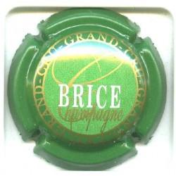 BRICE14 LOT N°5037