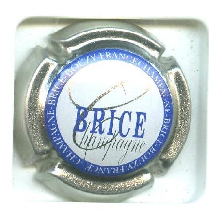 BRICE10 LOT N°5039