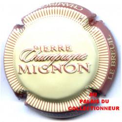 MIGNON PIERRE 100m LOT N°F13