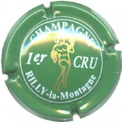 RILLY LA MONTAGNE134 LOT N°6340