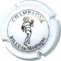 RILLY LA MONTAGNE020 LOT N°6351
