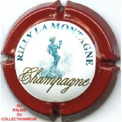 RILLY LA MONTAGNE138 LOT N°7660