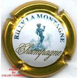 RILLY LA MONTAGNE139 LOT N°7662