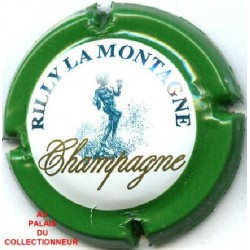 RILLY LA MONTAGNE143 LOT N°7663
