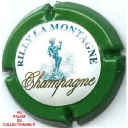 RILLY LA MONTAGNE137 LOT N°7702