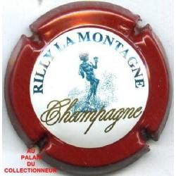 RILLY LA MONTAGNE144 LOT N°7705