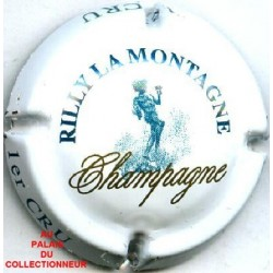 RILLY LA MONTAGNE141 LOT N°7706