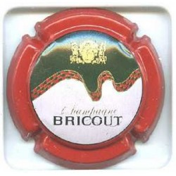 BRICOUT13 LOT N°1099