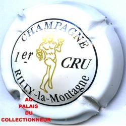 RILLY LA MONTAGNE127a LOT N°9254