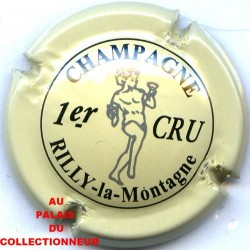 RILLY LA MONTAGNE129 LOT N°9665