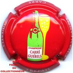 CARRE GUEBELS14 LOT N°10009
